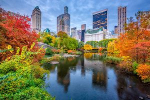 When is The Best Time to Visit new York