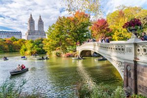 Ultimate Free Things You Can Do in New York City